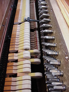 Brand New Insides for PianoAccompanists.com